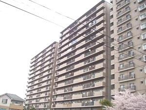 新着賃貸15:滋賀県近江八幡市中村町の新着賃貸物件